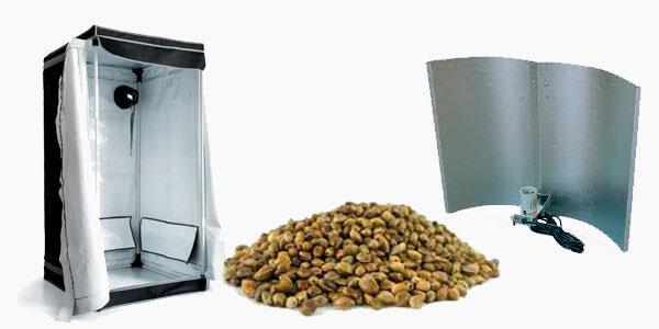 Semillas de marihuana para cultivo interior semillas de marihuana - Semillas de interior ...