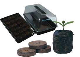 germinar semillas en jiffies