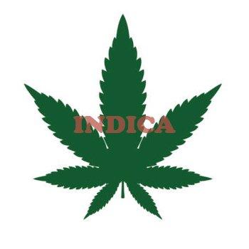 hoja de marihuana indica